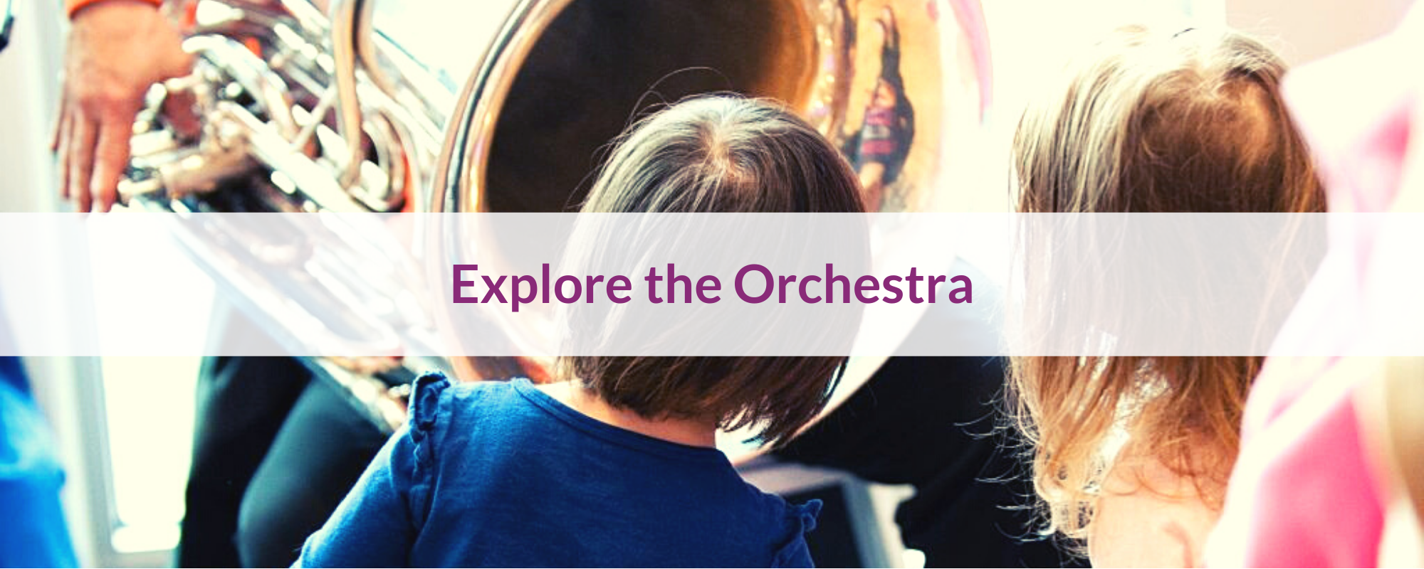 Explore the Instruments of the Orchestra