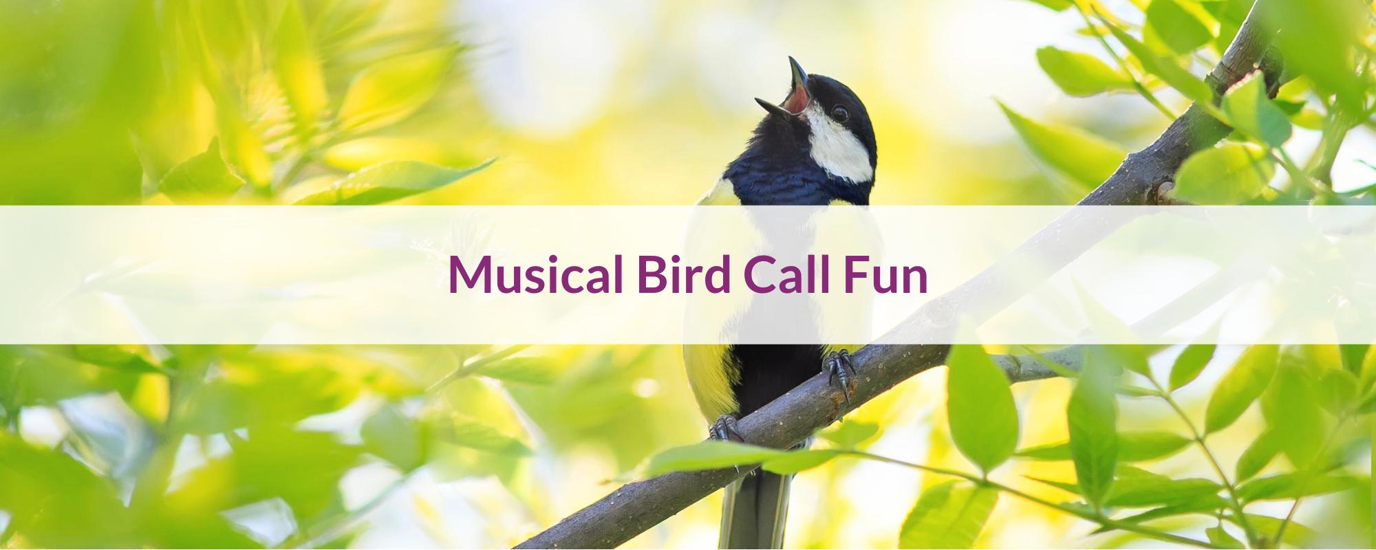 Canciones Musicales de Pájaros